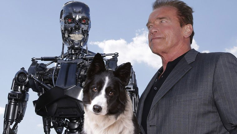 the terminator, arnold, and a dog