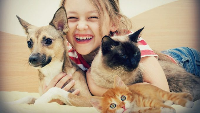 kid with dog and cats