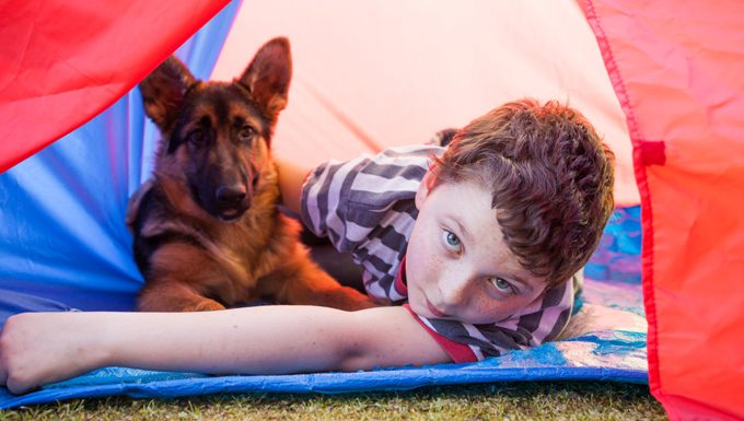 boy and german shepherd in tent