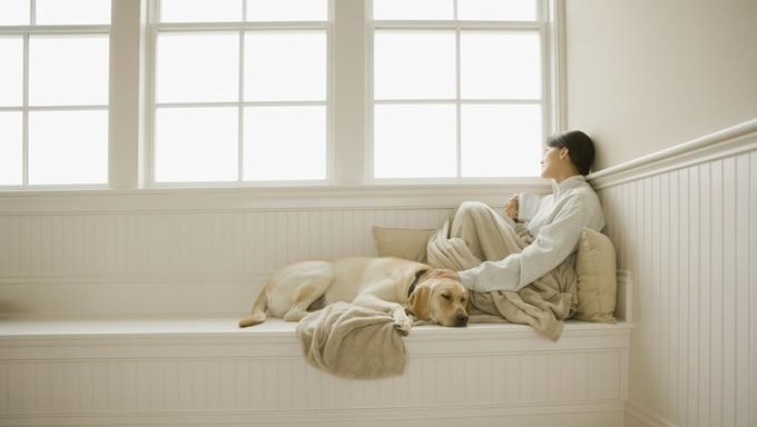 woman petting dog and looking out window