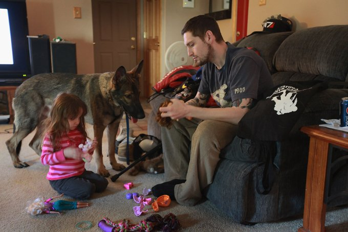 HANOVER PARK, IL - APRIL 27: Army veteran Brad Schwarz plays with his three-year-old daughter Arabella and service dog Panzer at his home April 27, 2012 in Hanover Park, Illinois. Schwarz, who suffers from post traumatic stress disorder (PTSD), uses a service dog to help him cope with issues related to the disorder which he has dealt with since returning from a 2008 tour in Iraq. In addition to suffering from PTSD Schwarz has memory loss related to Traumatic Brain Injury (TBI) and he must walk with a cane because of vertebrae and nerve damage in his back and legs. Ten days before he was scheduled to rotate home from a 15-month deployment in Iraq, his second, the Humvee in which he was riding was struck by an Improvised Explosive Device (IED). Of the 5 soldiers riding in the vehicle, which caught fire after the explosion, Schwarz was the only one to survive. (Photo by Scott Olson/Getty Images)