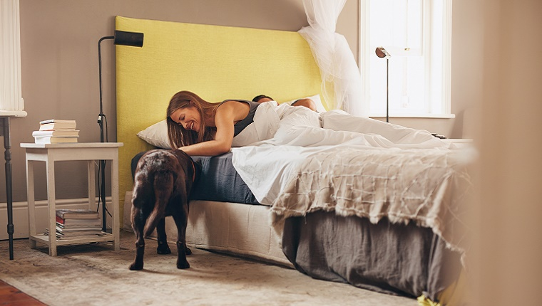 A dog stands next to a bed while a woman leans over and pets him.