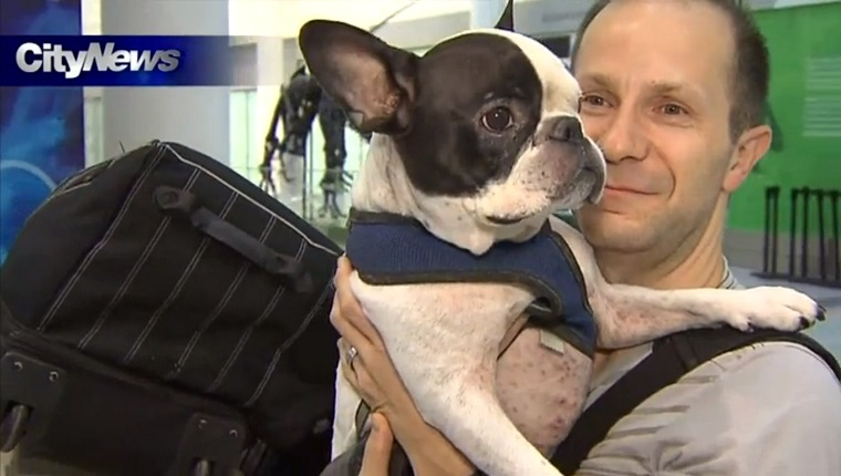 A man holds his French Bulldog in his arms next to his luggage in an airport.