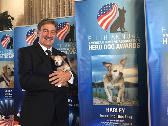 Harley's owner holds Harley in his arms next to a banner for the American Humane Association Hero Dog Awards.