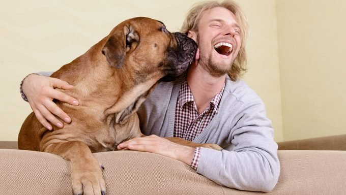 man laughing while dog licks his face