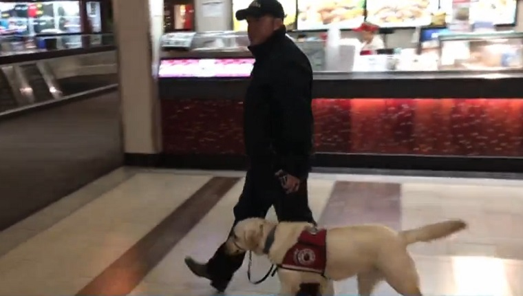 Brown walks through the mall with his service dog walking next to him on a leash.