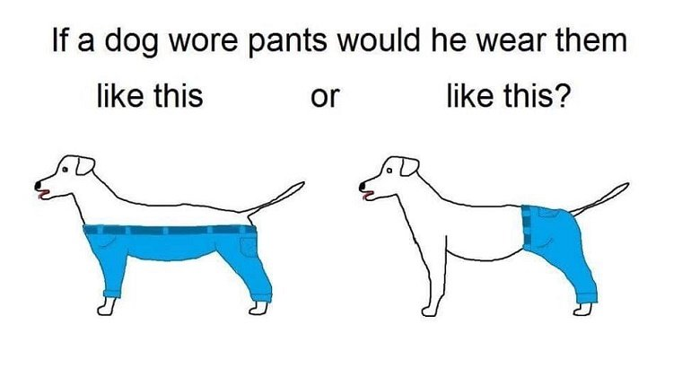 """A drawing of two dogs. One wears pants that cover his hind quarters and one wears pants that cover all four legs and leave the back exposed. The caption reads, """"If a dog wore pants would he wear them like this or like this?"""""""