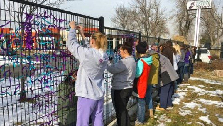 Volunteers tie ribbons to the fence outside of the Humane Society of Utah.