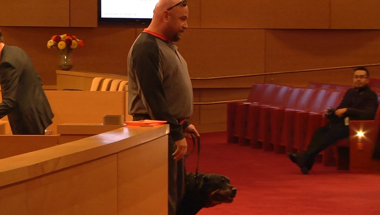 A man stands in front of the city council with his Rottweiler.