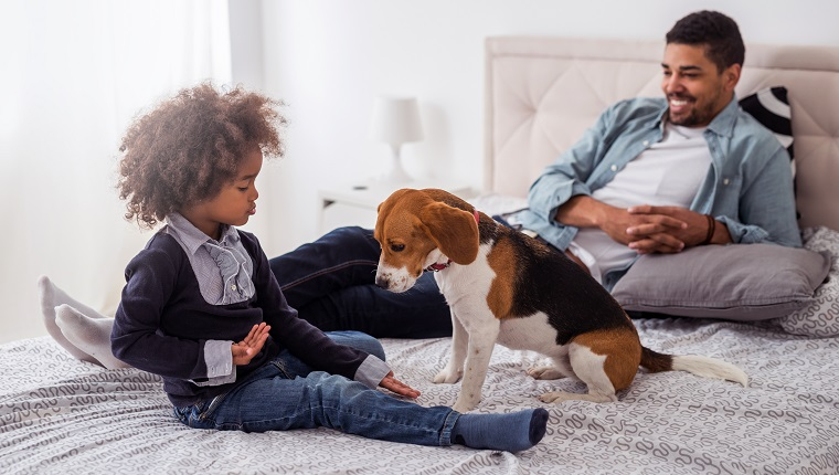 Photo of an african american family spending time together with a dog in the bedroom.