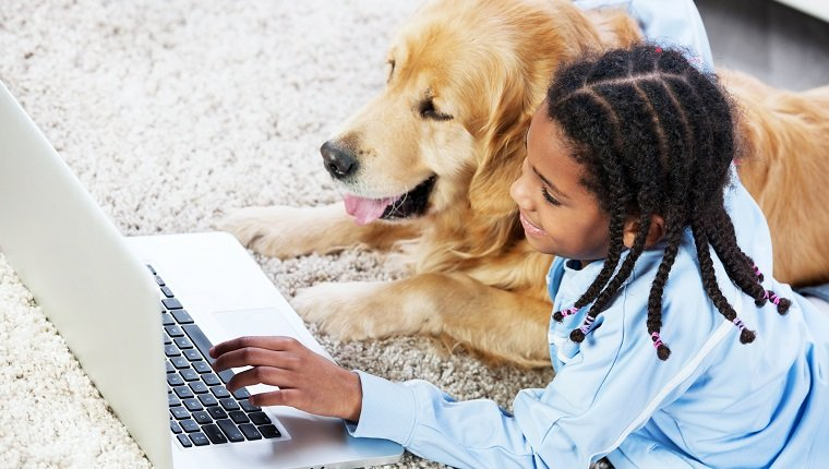 """""""Girl lying on the carpet with golden retriever dog, and typing on the laptop."""""""