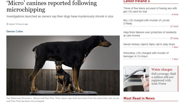 A news story about microchips shrinking dogs