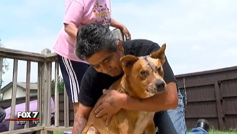 Guzman holds his dog, OG, who has stitches on his head.