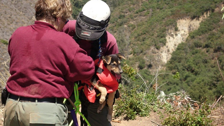 A worker assists Gove at the top of the ravine