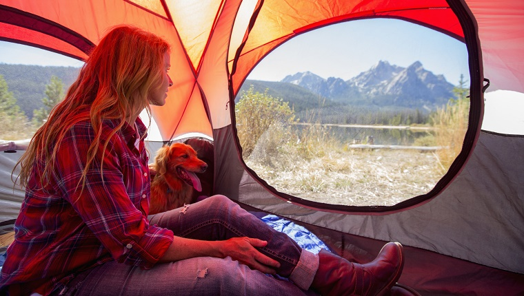 Caucasian woman and dog in camping tent
