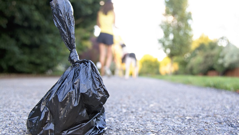Close-up of a small plastic garbage bag used to pick up dog pooh. This bag was left on the path and the dog and their owner are continuing down the path, out of focus. Concept and ideas about modern life, picking up after your pet, respect of others and taking care of the environment.