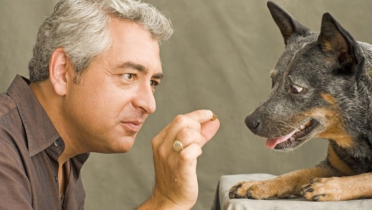 Man offering treat to dog