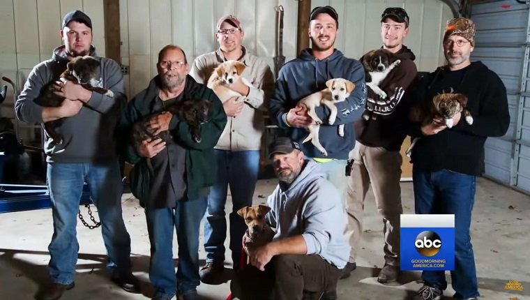 bachelor-party-saves-dogs-1