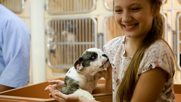 At animal adoption centre cute girl holding a puppy ready to adopt