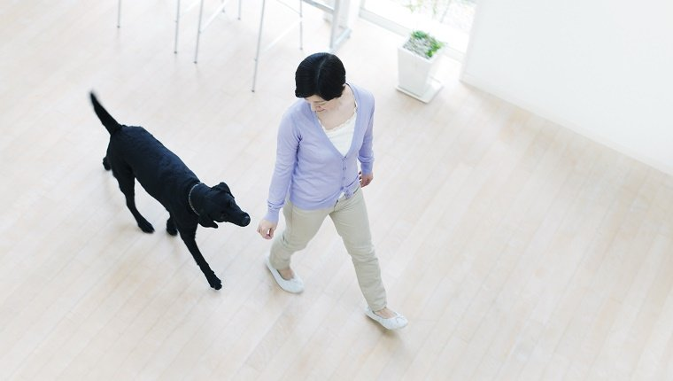 Young Woman And Dog Walking In The House