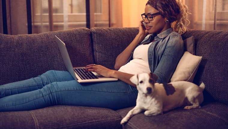 Smiling African American woman sitting on the sofa with her dog and typing on laptop while talking on cell phone.