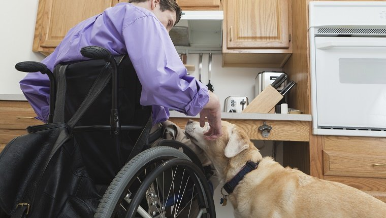 Man with spinal cord injury petting his service dog in an accessible kitchen