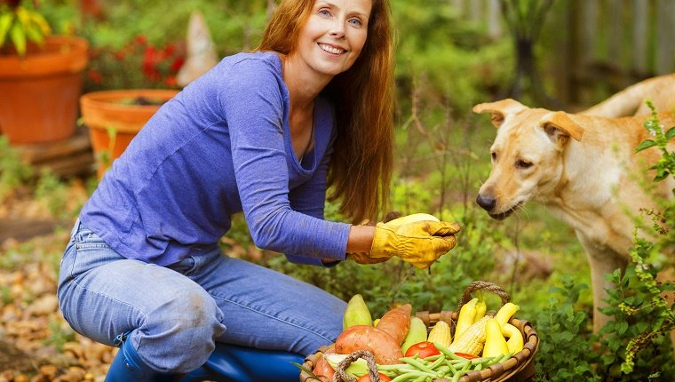 Mature woman in her garden with a table full of garden fruits and vegetables.