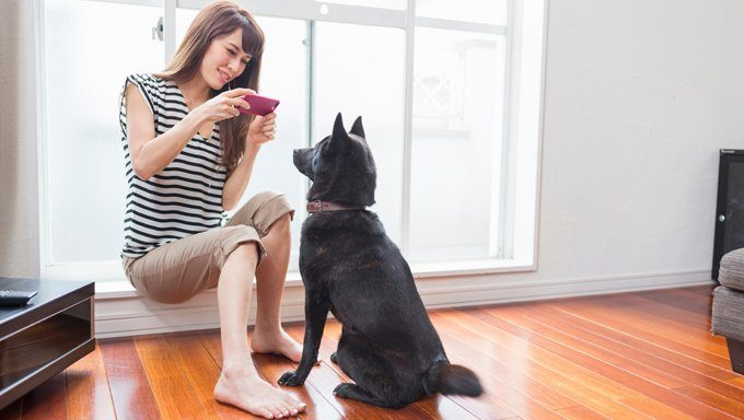 Woman photographing dog on camera phone