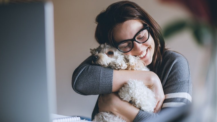 Young woman playing with her dog while sitting at desk in front of computer and working online.