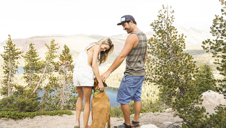 Side view of couple with dog standing on mountain against clear sky in forest