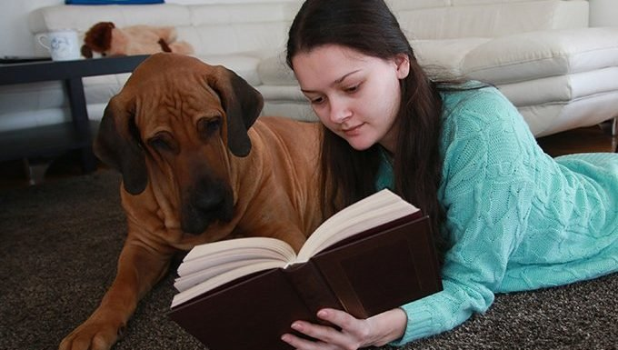dog and girl with book