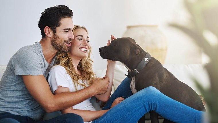 Shot of a young couple relaxing at home with their dog