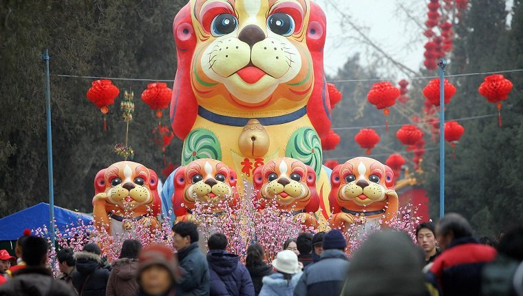 BEIJING, CHINA: A display of dogs greets visitors arriving for the opening of the Ditan (Temple of the Earth) Park temple fair to ring in the Lunar New Year, 28 January 2006 in Beijing. The most important holiday in the Chinese calendar, the Lunar New Year, also known as Spring Festival, begins with the Year of the Dog on 29 January. AFP PHOTO/Frederic J. BROWN (Photo credit should read FREDERIC J. BROWN/AFP/Getty Images)
