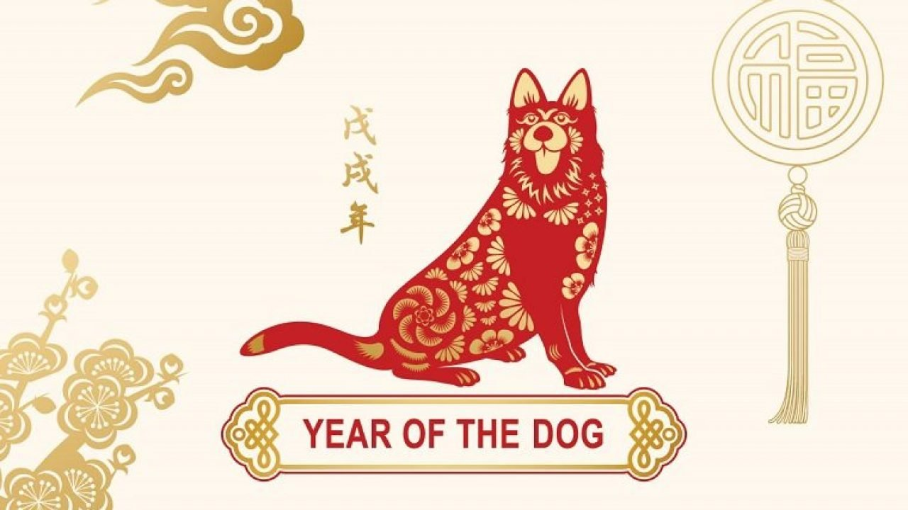 Water Dog Chinese Astrology Compatibility