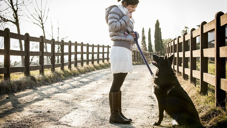 Mid adult woman training her dog to sit on rural road