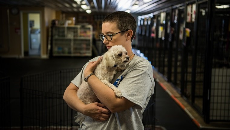 PEYTON, CO - MARCH 9: Dog Care Team member Sonja Row, holds a 11 year old Maltese male dog that arrives few days ago to the National Mill Dog Rescue seen on Friday, March 9, 2018, in Peyton, CO.