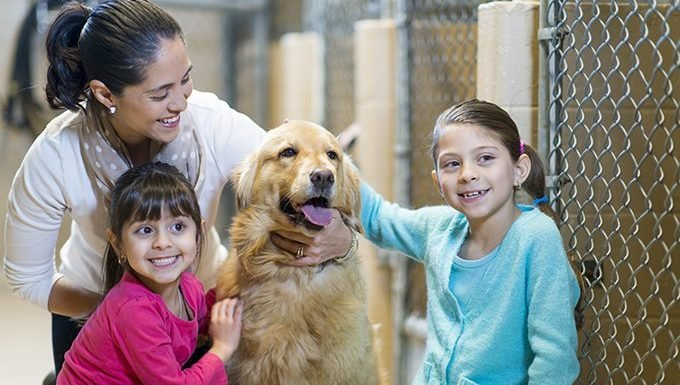 family with dog in shelter
