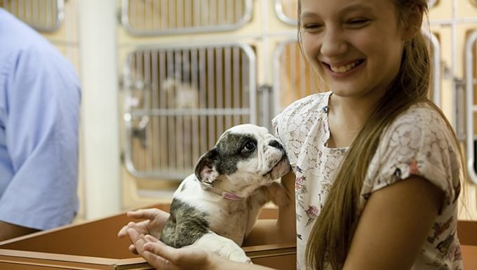 kid with puppy at rescue