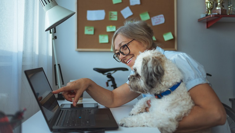 Close up of Caucasian woman and her dog working at home
