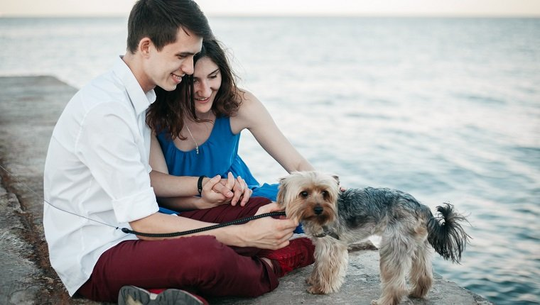 Young Caucasian heterosexual couple sitting near the sea with dog