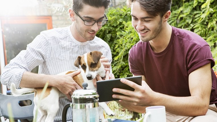 gay couple looking at digital tablet in garden.