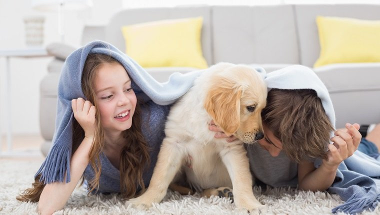 Brother and sister with puppy under blanket lying on rug at home