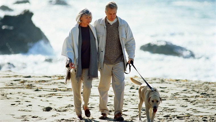 Middle-aged couple walking labrador dog on beach