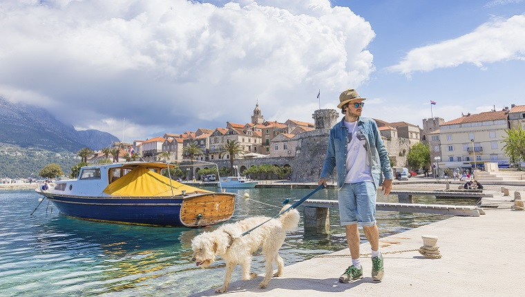 Man walking the Dog at the Harbour of the Old Town of Korcula