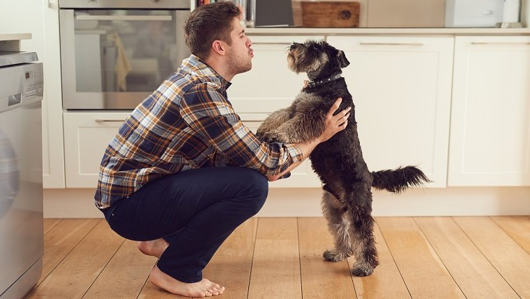 Shot of a man playing with his dog at home