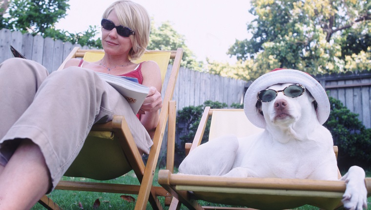 woman and dog on lawn chairs