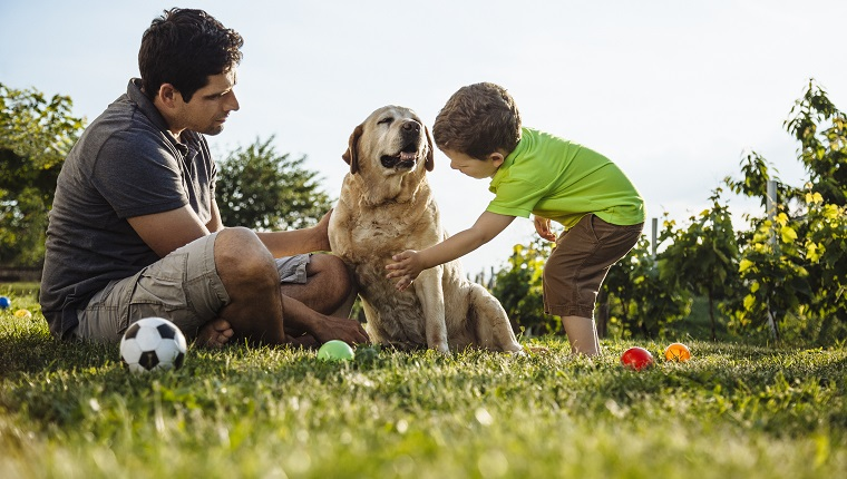 Happy kid and father with dog enjoy perfect sunny day on grass in garden near the house.