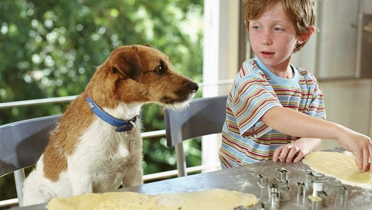 Boy (4-6) cutting out biscuit shapes next to dog sitting up at counter