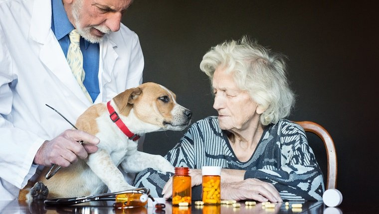 Pet therapy has an amazing impact on quality of liefe of a senior woman in assisted living home
