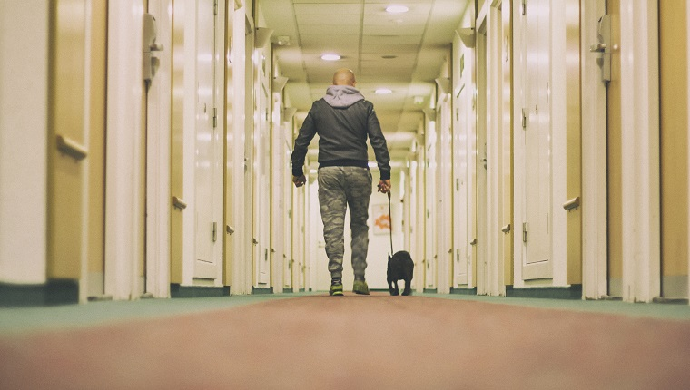 Man walking the dog in a hall